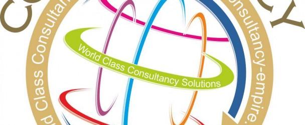 Consultancy Empire